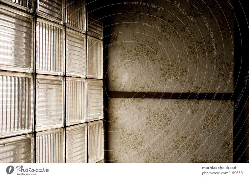 STILLSTAND FÜR ZEIT UND GEIST schön alt ruhig dunkel Wand Fenster Stein Mauer Glas ästhetisch Fabrik Gelassenheit Ruine Furche Industrieanlage