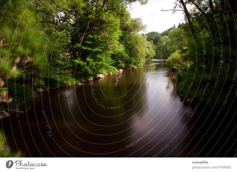 Ruhe Farbfoto Außenaufnahme Menschenleer Textfreiraum oben Textfreiraum unten Tag Schatten Kontrast Reflexion & Spiegelung Bewegungsunschärfe