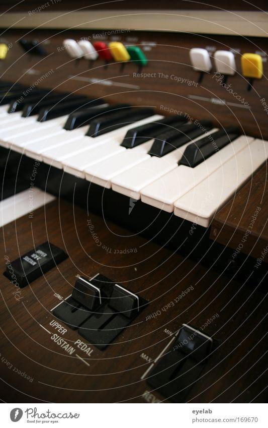 Dem Organisten auf die Tasten geschaut Farbfoto Innenaufnahme Nahaufnahme Detailaufnahme Menschenleer Schatten Schwache Tiefenschärfe Totale Freizeit & Hobby