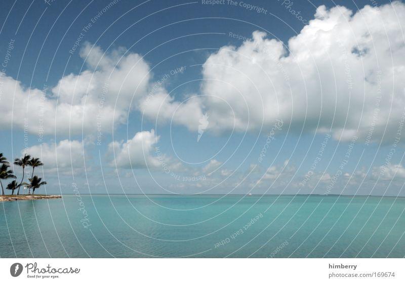 castaway Natur Himmel Meer Sommer Strand Ferien & Urlaub & Reisen ruhig Wolken Ferne Erholung Stil Freiheit Landschaft Zufriedenheit Küste elegant