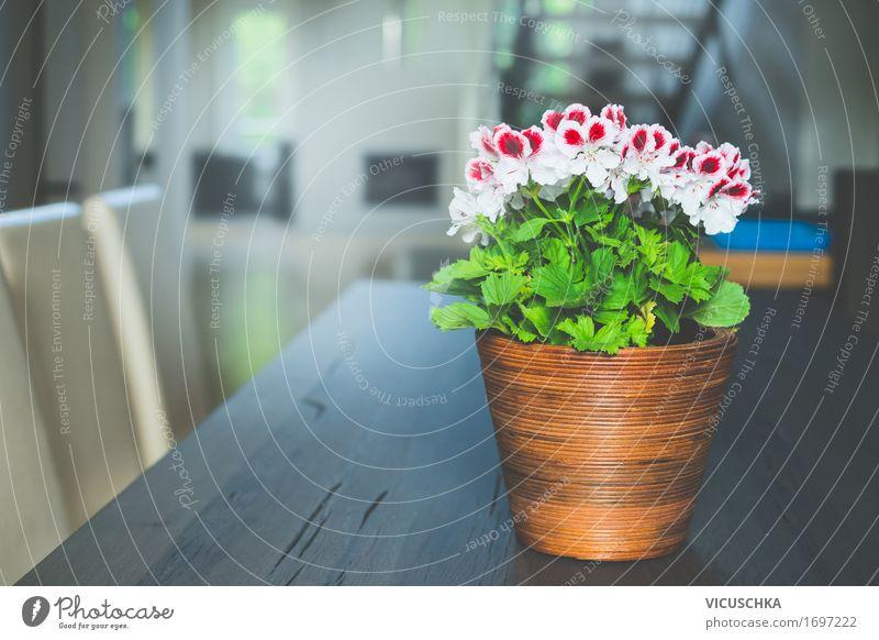 Blumen im Topf auf dem Tisch im Wohnzimmer Natur Sommer schön Fenster Leben Innenarchitektur Lifestyle Design Wohnung Treppe Häusliches Leben