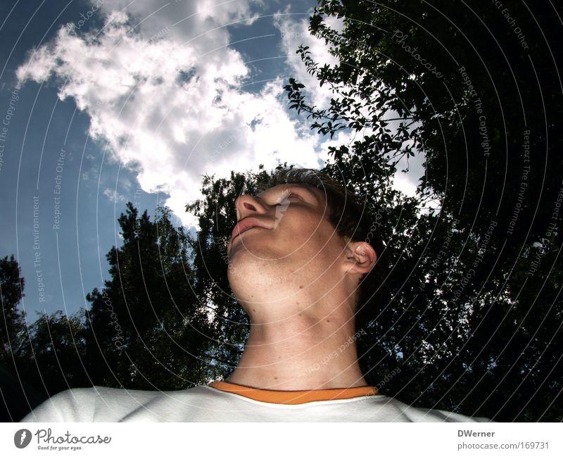 Himmelsgucker Mensch Natur Jugendliche Baum Wolken Gesicht Erwachsene Kopf träumen Mund groß maskulin Nase Erfolg 18-30 Jahre