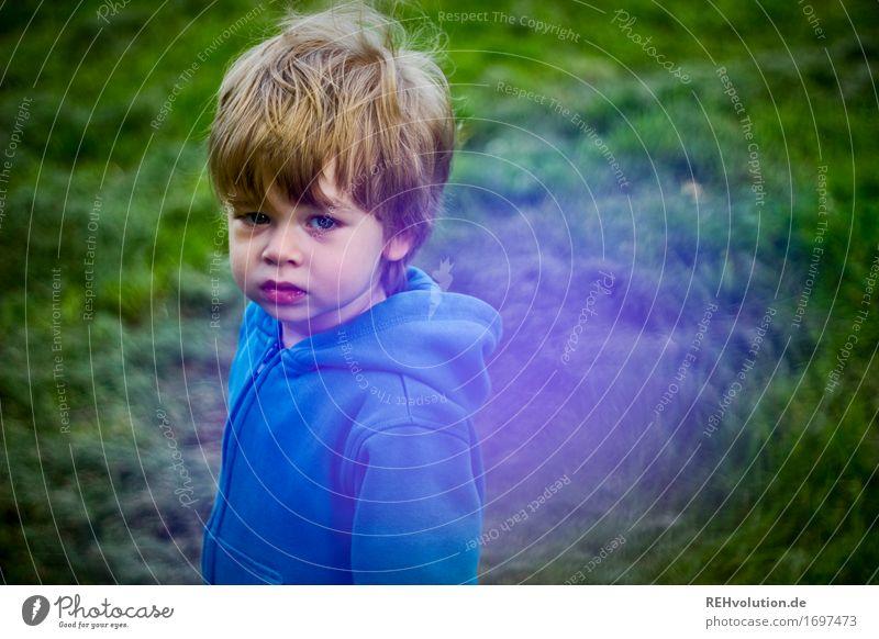 unterwegs Mensch Kind Natur blau grün Umwelt Traurigkeit Gefühle Wiese Gras Junge klein Garten maskulin Park Angst