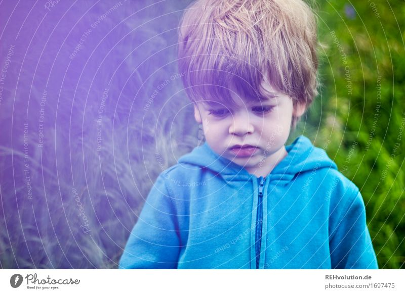 nicht gut drauf Mensch Kind Natur Umwelt Traurigkeit Wiese natürlich Gras Junge klein Haare & Frisuren Kindheit Kommunizieren Wut Kleinkind Pullover