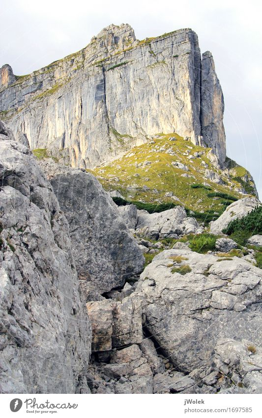Blick auf einen Bergkette in den Österreichische Alpen (Rofan) Natur Ferien & Urlaub & Reisen Pflanze Sommer Landschaft Erholung Wolken Tier Freude