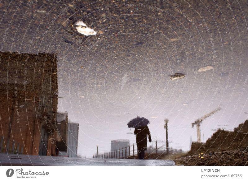 Wohlverdienter Regenspaziergang Farbfoto Außenaufnahme Nahaufnahme Textfreiraum oben Textfreiraum Mitte Tag Reflexion & Spiegelung Unschärfe