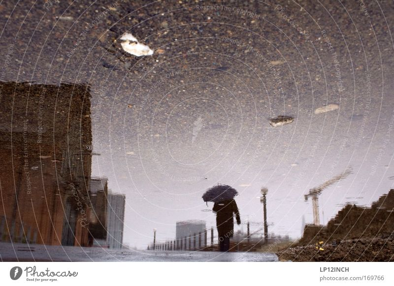 Wohlverdienter Regenspaziergang Mensch Natur Mann Wasser Stadt Sommer Haus Erwachsene Umwelt Sand Stein Traurigkeit Gebäude Regen Wetter Erde