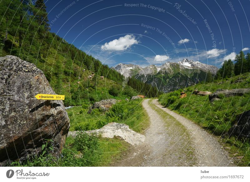Malfonalm 4 Ferien & Urlaub & Reisen Tourismus Sommer Sommerurlaub Berge u. Gebirge wandern Umwelt Natur Landschaft Klima Schönes Wetter Hügel Felsen Alpen