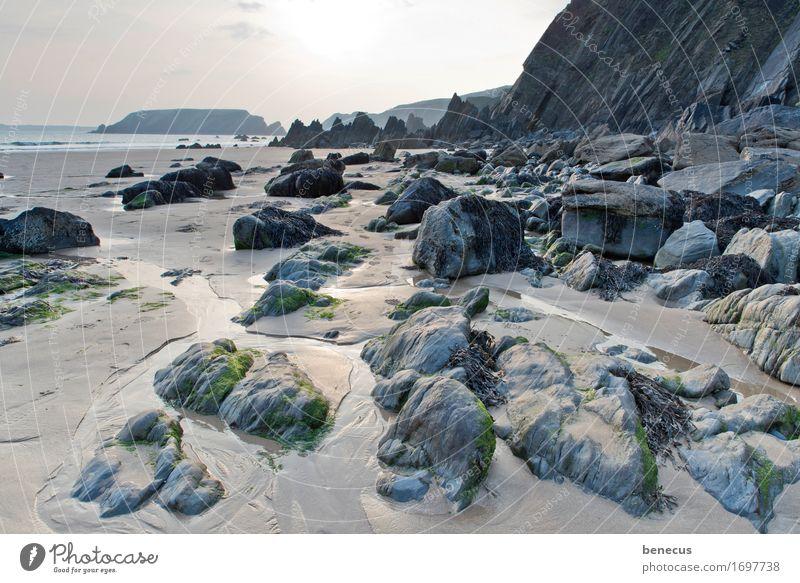 Marloes Sands Natur Landschaft Urelemente Wasser Himmel Sonne Sonnenaufgang Sonnenuntergang Sommer Schönes Wetter Küste Strand Bucht Riff Meer Steinküste Steine