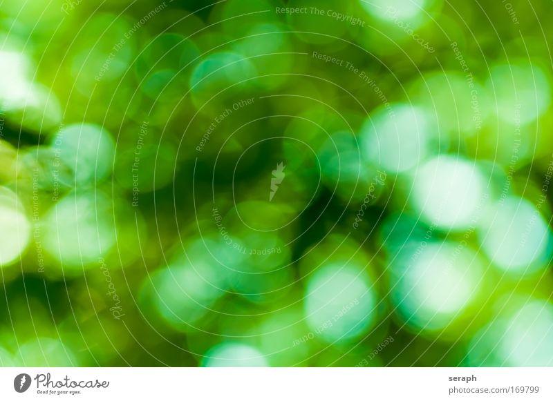 Grüne Spots Beleuchtung glänzend Hintergrundbild Punkt kreisrund Festbeleuchtung erhellend erhellendes
