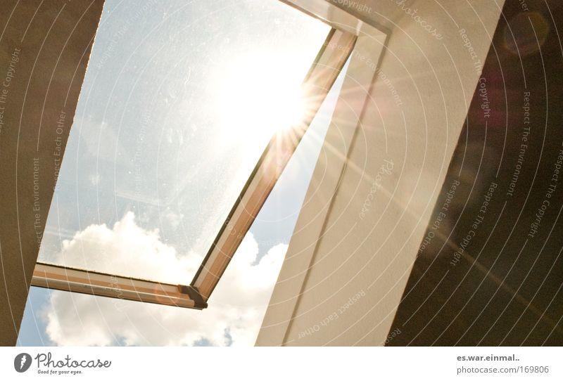 sunday was a bright day. schön Himmel blau Sommer Wolken Leben Erholung Fenster Wärme Luft Zufriedenheit hell Kraft Wetter frisch Fröhlichkeit