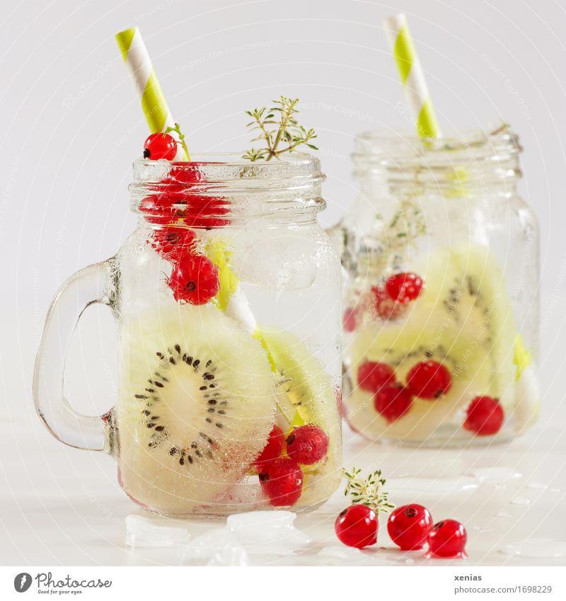 Erfrischungsgetränk mit Kiwi und Johannisbeere Lebensmittel Frucht Johannisbeeren Thymian Eiswürfel Vitamin Diät Getränk trinken Trinkwasser Limonade Glas