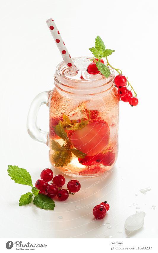 Ein Glas kühles leckeres Erfrischungsgetränk mit Erdbeere und Johannisbeere auf weißem Hintergrund Getränk Johannisbeeren Erdbeeren Limonade Frucht Trinkwasser