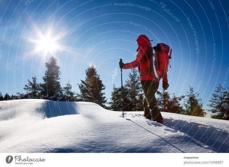 Mensch Himmel Natur Ferien & Urlaub & Reisen Mann blau weiß Baum Landschaft Erholung rot Einsamkeit Winter Wald Berge u. Gebirge Erwachsene