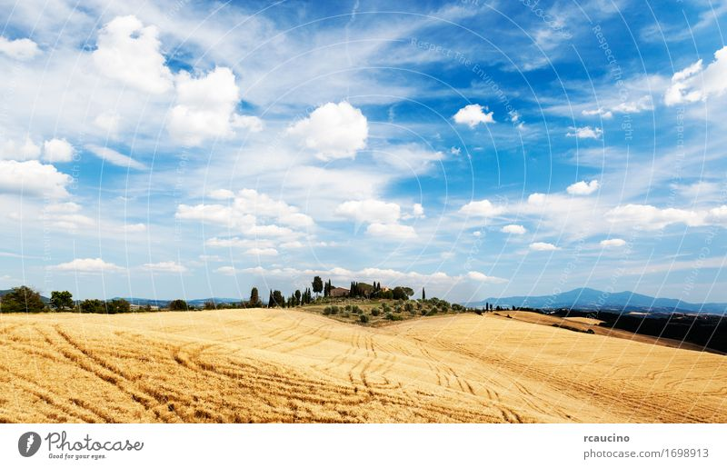 Toskanische Landschaft an einem sonnigen Tag des Sommers Erholung Ferien & Urlaub & Reisen Tourismus Haus Natur Himmel Wolken Baum Hügel Dorf Gebäude blau gelb