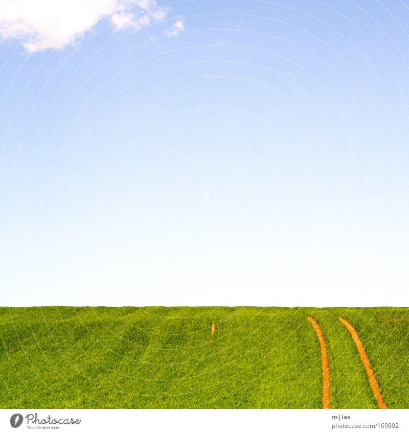 leicht bewölkt Natur Himmel Pflanze Sommer Ferien & Urlaub & Reisen Wolken Einsamkeit Farbe Wiese Gras träumen Traurigkeit Wärme Landschaft Luft Feld