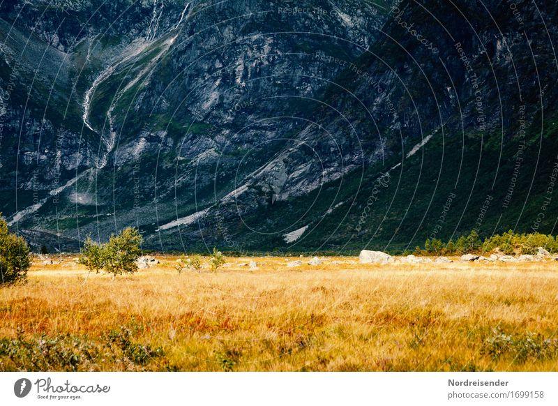 Endwelt Natur Pflanze Landschaft Einsamkeit dunkel Berge u. Gebirge Wege & Pfade Wiese Gras außergewöhnlich Stein Felsen wandern groß Schönes Wetter bedrohlich