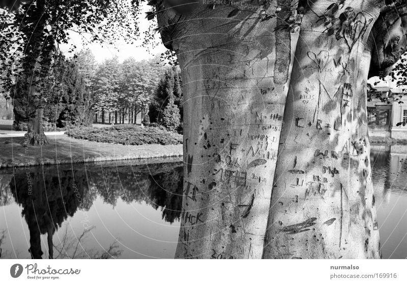 ver ewig t Natur Ferien & Urlaub & Reisen Gefühle Architektur Glück Garten Wege & Pfade Park Tourismus Schriftzeichen Spaziergang Kultur einfach Kitsch