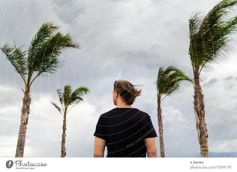 Stürmische Zeiten Ferien & Urlaub & Reisen Sommer Mensch maskulin Körper 1 Natur Wolken Klima Klimawandel Unwetter Wind Sturm Baum exotisch Tapferkeit