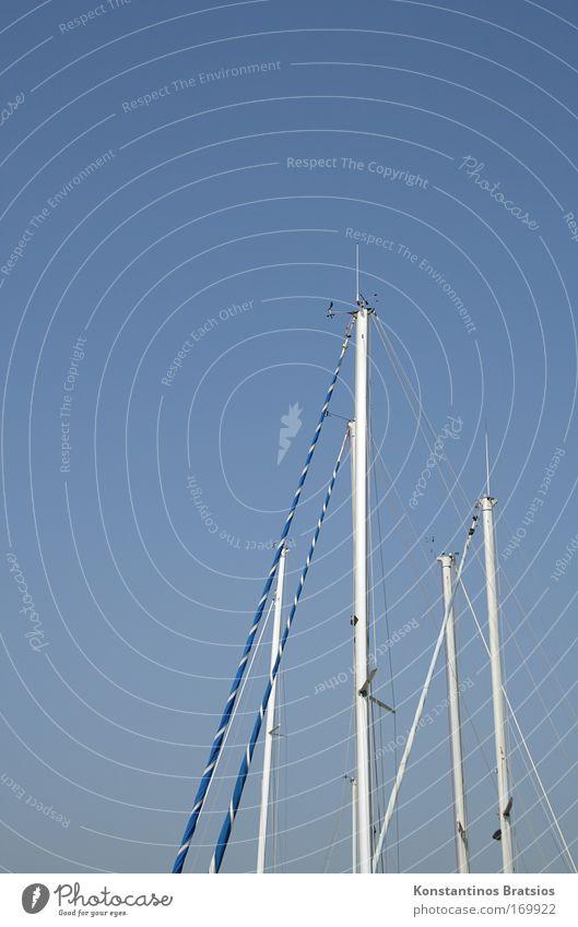 /|li\ Farbfoto Außenaufnahme Menschenleer Textfreiraum links Textfreiraum oben Hintergrund neutral Tag Sonnenlicht Zentralperspektive Wolkenloser Himmel Sommer