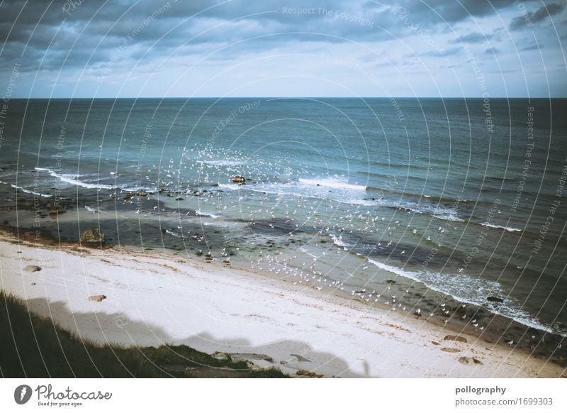 Beach Leben Ferien & Urlaub & Reisen Ausflug Abenteuer Ferne Freiheit Meer Natur Sand Wasser Himmel Wolken Klima Wetter schlechtes Wetter außergewöhnlich