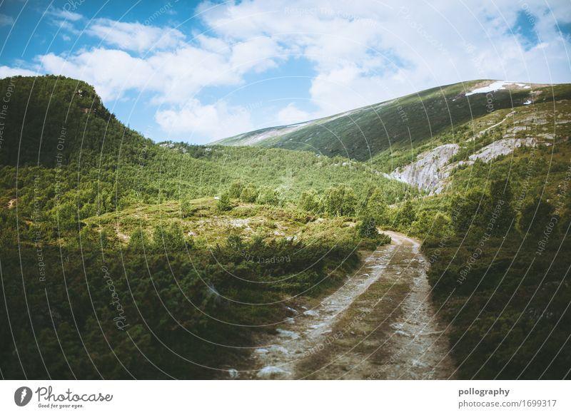 my way to norway VIII Ferien & Urlaub & Reisen Tourismus Ausflug Abenteuer Ferne Freiheit Expedition Camping Berge u. Gebirge wandern Natur Landschaft Pflanze