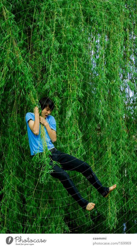 Tarzan auf koreanisch Spielen Freiheit Junger Mann Jugendliche Baum Weide Garten Wald Urwald Seeufer Teich fliegen hängen schaukeln schreien springen frei