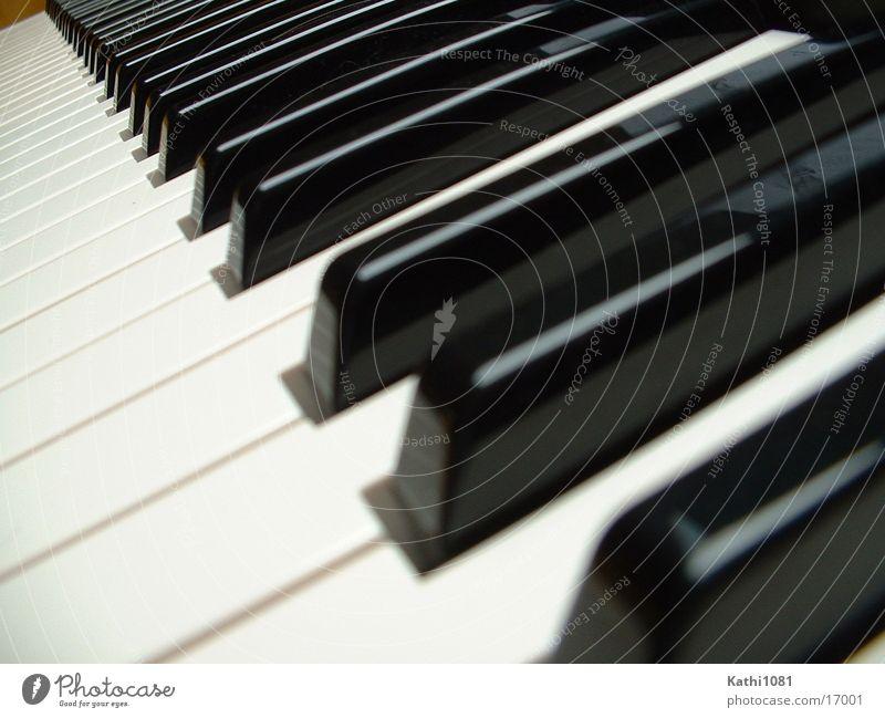 Tasten Klavier Freizeit & Hobby Musik berühren Perspektive Musiknoten