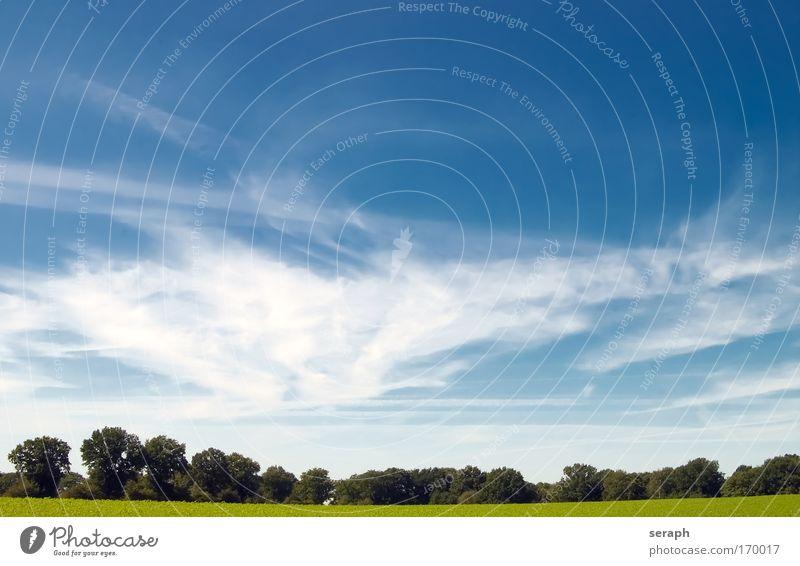 Weideland Hintergrundbild ländlich Wiese Feld Himmel Wolken Natur Landschaft Freiheit relaxation Frieden distance vision Horizont minimalistisch easiness