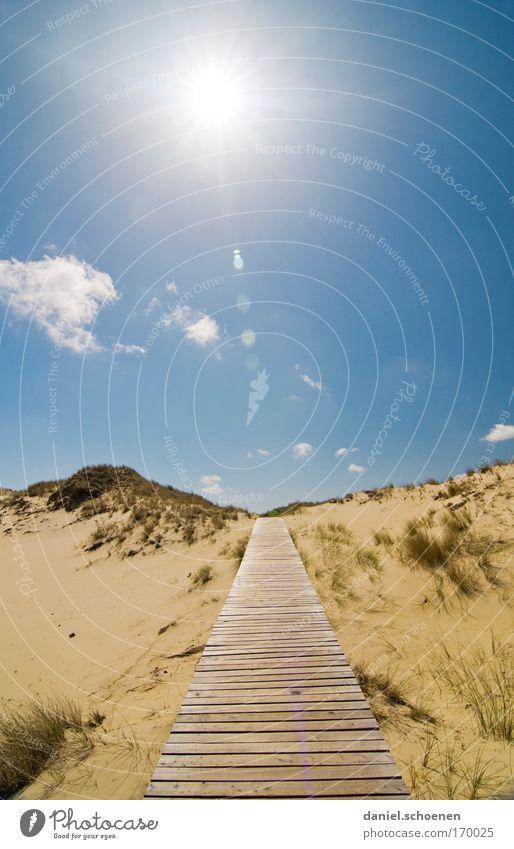 Brüder und Schwestern zur Sonne ... Himmel Meer blau Sommer Strand Ferien & Urlaub & Reisen ruhig Ferne Erholung Freiheit Wege & Pfade Sand Horizont Zukunft