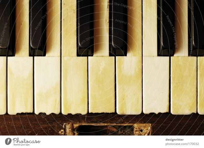 Bad Taste alt schön Spielen Traurigkeit Musik Finger kaputt Bar historisch Gewalt Müdigkeit Klaviatur Klavier Elefant Künstler Aggression