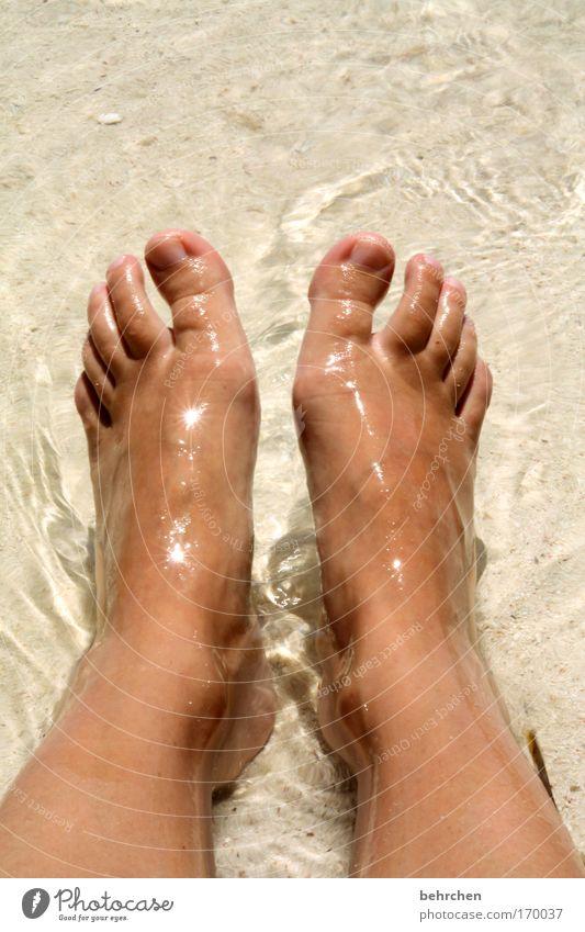 fußbad Wasser Sonne Strand Ferien & Urlaub & Reisen Meer Ferne Freiheit Sand Küste Beine Fuß Wellen Haut Insel Tourismus Schwimmen & Baden