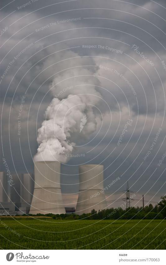 Abkühlung Pflanze Umwelt Wiese Feld Klima dreckig Energiewirtschaft Ausflug Zukunft Wandel & Veränderung Industrie Fabrik Rauch Bioprodukte Wirtschaft atmen