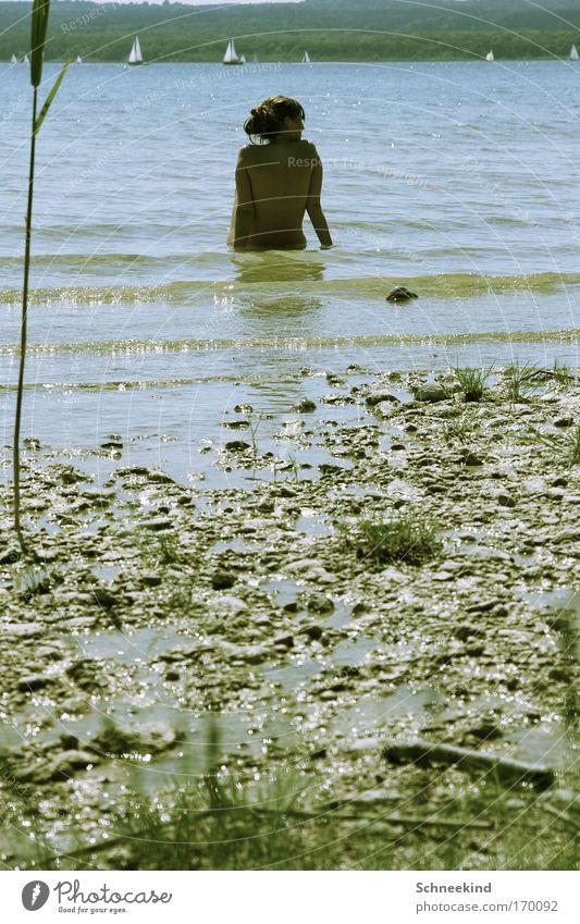 Genieße den Feierabend Mensch Jugendliche Wasser Pflanze Sommer Einsamkeit Ferne Erholung nackt feminin Gras Freiheit Glück träumen See