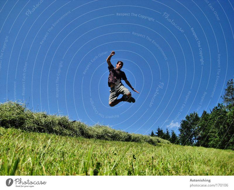 Hürdensprung Mensch Himmel Natur Jugendliche blau grün Baum Sonne Sommer Freude Erwachsene Umwelt Landschaft Wiese Bewegung Gras