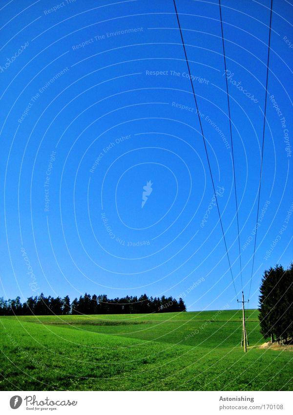 eine lange Leitung Natur Himmel Baum grün blau Sommer Wald Wiese Gras Holz Landschaft Linie Wetter Umwelt hoch Erde