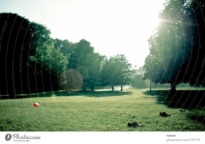 parkstadion Baum Sonne Sommer Freude ruhig Erholung Wiese Spielen Gras Park Schuhe Freizeit & Hobby Fußball Ball Schönes Wetter Konkurrenz