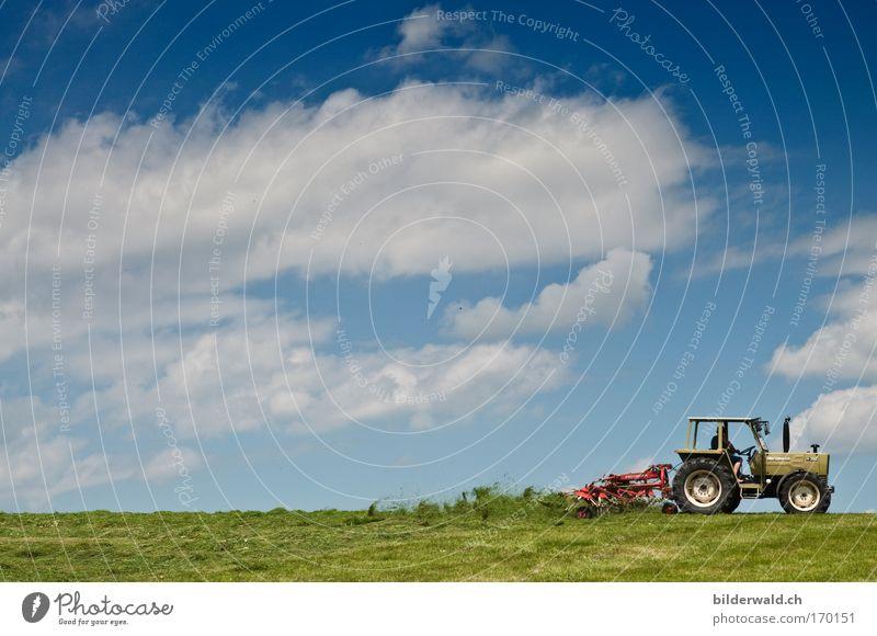 Wirbelwind Farbfoto Außenaufnahme Textfreiraum links Textfreiraum oben Tag Silhouette Totale Weitwinkel Traktor Mischzetter Natur Landschaft Pflanze Erde Himmel