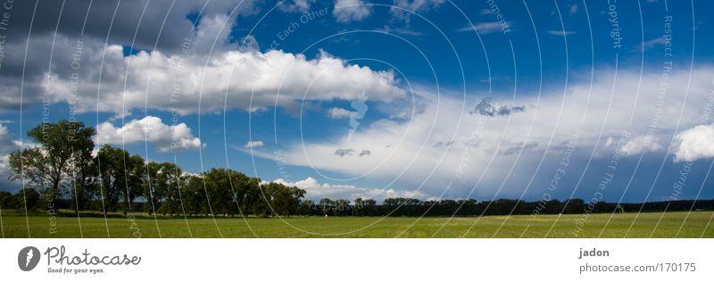 Brandenburger Landpartie Himmel Wolken Erholung Landschaft Zufriedenheit Feld groß Tourismus Ferien & Urlaub & Reisen Unendlichkeit Blumenstrauß genießen