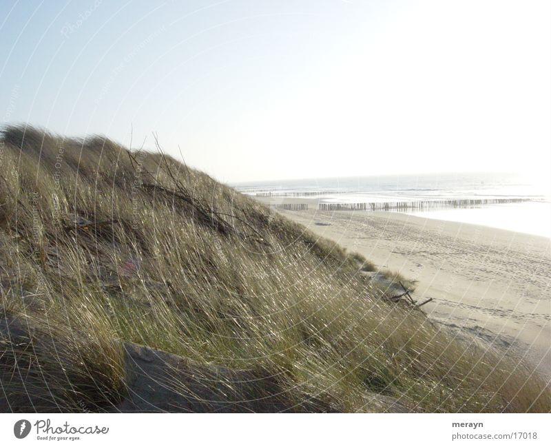 Gegenlicht Niederlande Europa Strand bei Domburg