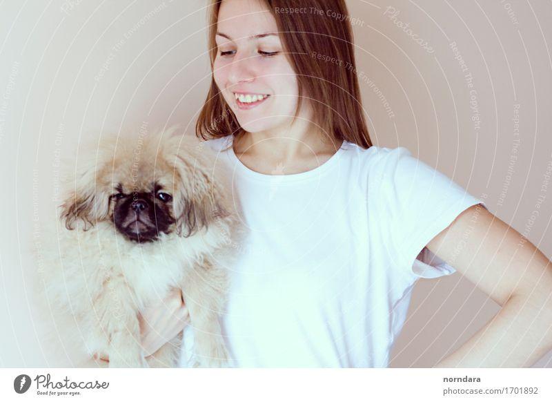 glückliches Mädchen mit Hund Freude Gesundheit Mensch Leben 18-30 Jahre Jugendliche Erwachsene 30-45 Jahre T-Shirt Haustier Tiergesicht berühren Lächeln lachen