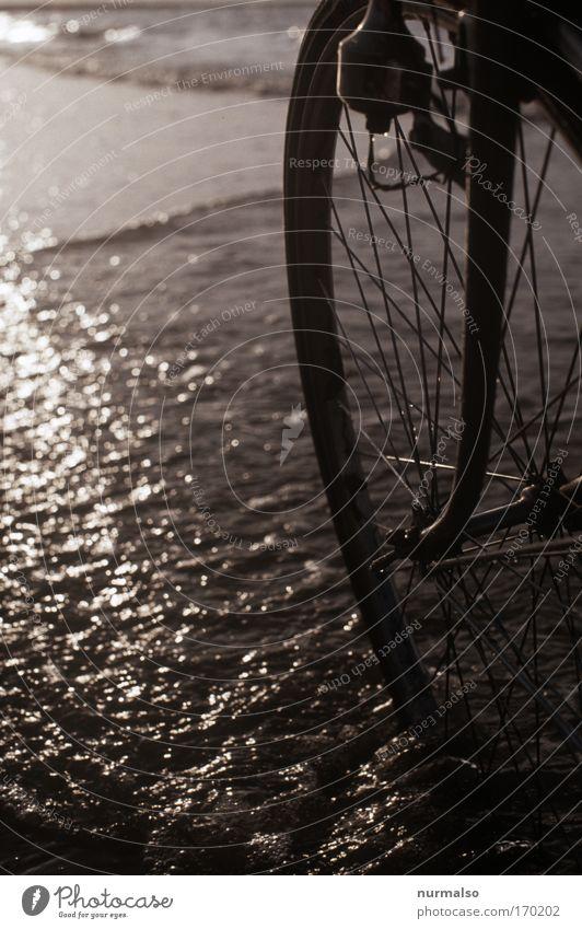 Lagerkiller oder, ein Rad im Meer Farbfoto Dämmerung Sinnesorgane Erholung Freizeit & Hobby Fahrradtour Strand Natur Wasser Sonnenaufgang Sonnenuntergang Sommer