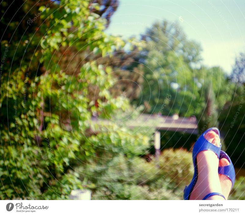 passt der pinke nagellack dazu? Natur blau grün schön Baum Sommer Erholung Landschaft Garten Stil träumen Fuß Park Zufriedenheit Schuhe elegant