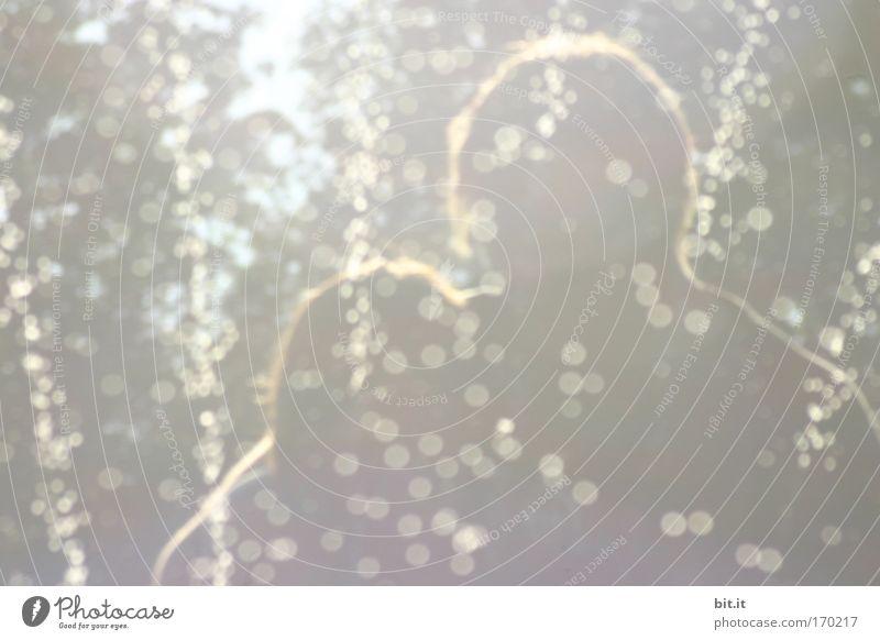 WOODSTOCK 2009 Gedeckte Farben Außenaufnahme Experiment abstrakt Muster Strukturen & Formen Textfreiraum unten Dämmerung Licht Reflexion & Spiegelung