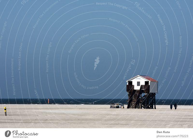 Hoch hinaus Freude Glück Ferne Freiheit Sommer Sommerurlaub Sonne Sonnenbad Strand Meer Landschaft Urelemente Sand Wasser Himmel Wolkenloser Himmel