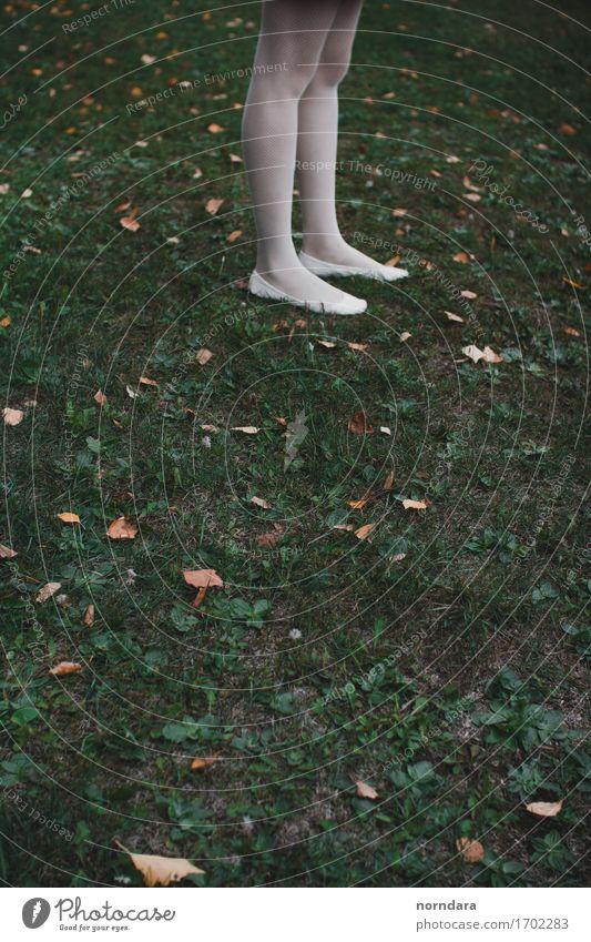 Pflanze grün Blume Wiese Gras Beine Garten Park stehen Schuhe laufen Abenteuer Oberschenkel