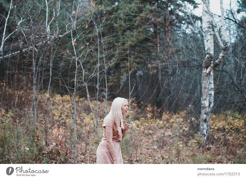 ein verlorenes Mädchen im Wald Mensch 1 18-30 Jahre Jugendliche Erwachsene Umwelt Natur Pflanze Baum Gras Sträucher Moos Garten Park Jagd gruselig Blick verirrt