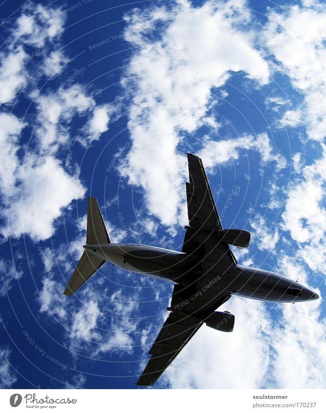noch einmal Schräglage Himmel Natur weiß blau Ferien & Urlaub & Reisen Wolken schwarz Glück Angst Flugzeug fliegen groß Verkehr Tourismus Luftverkehr bedrohlich
