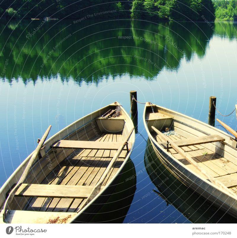 Stillleben Sommer ruhig Wald Erholung See Küste Wasserfahrzeug Hafen Idylle Seeufer Angeln Ruderboot
