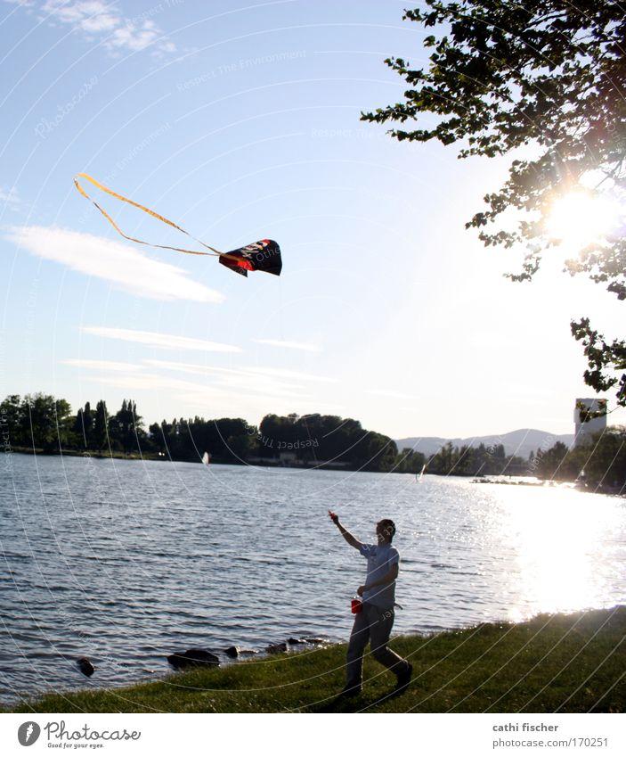 donau spaß Mensch Jugendliche Wasser Himmel Baum Sonne grün blau Sommer Freude schwarz Wolken Spielen Gras Bewegung Glück